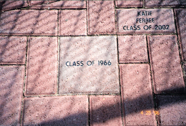 Our Paver